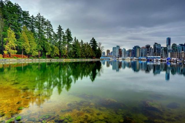 Симбиоз города и природы