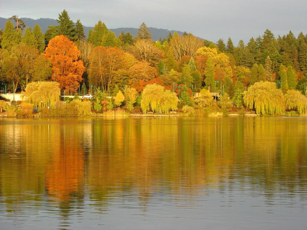 Осень в парке Стенли