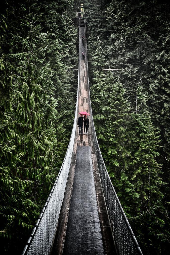 Подвесной мост Capilano