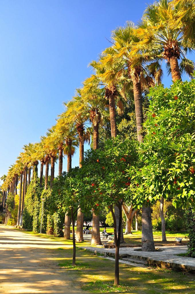 Государственный сад Никосии