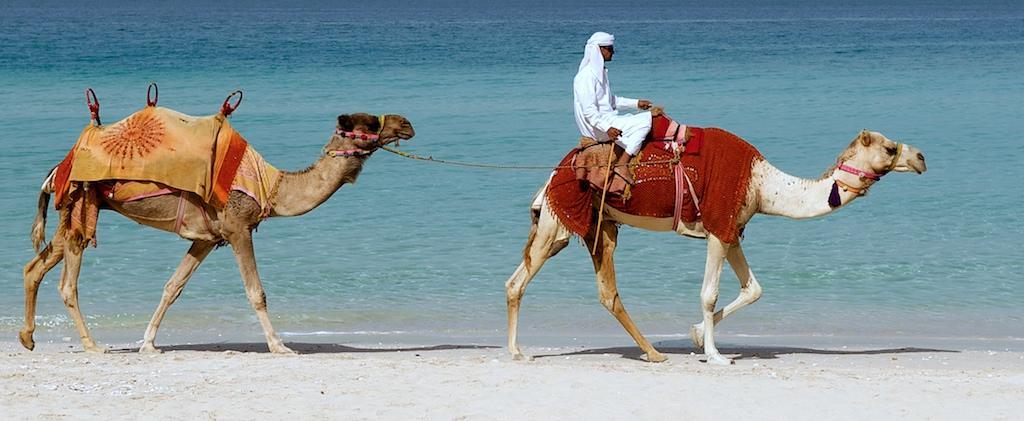 Транспорт на пляже