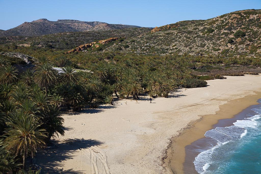 Пальмовый пляж Ваи