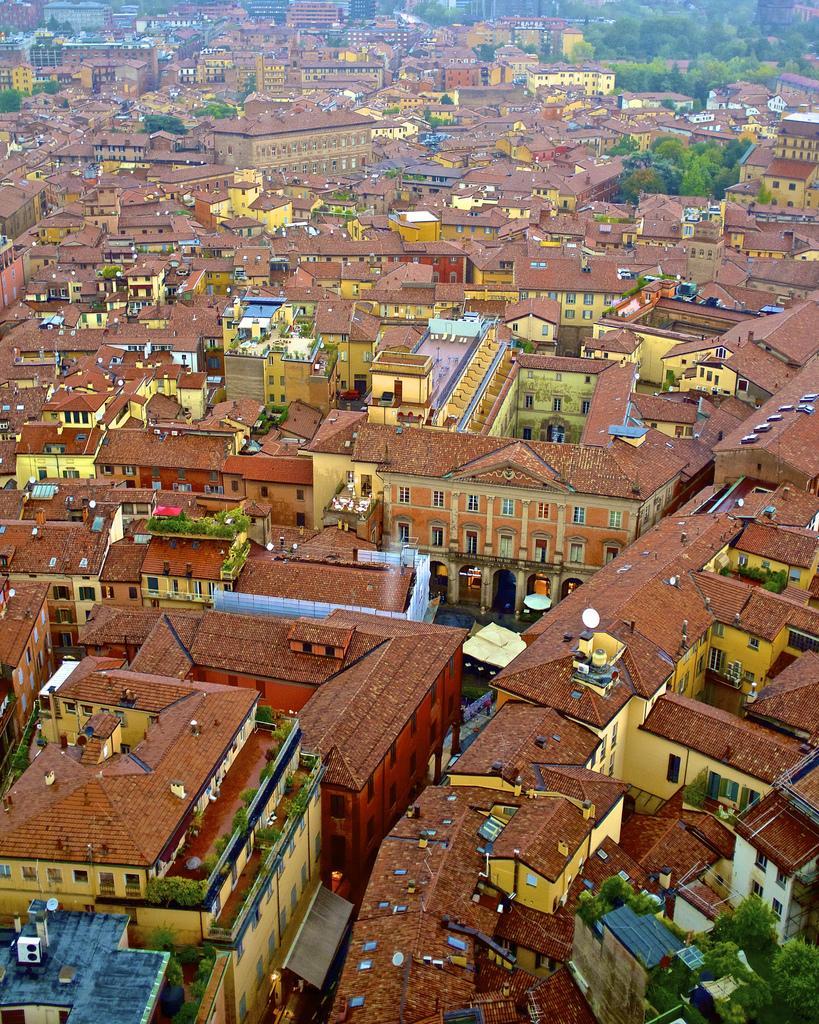 Types Bologna