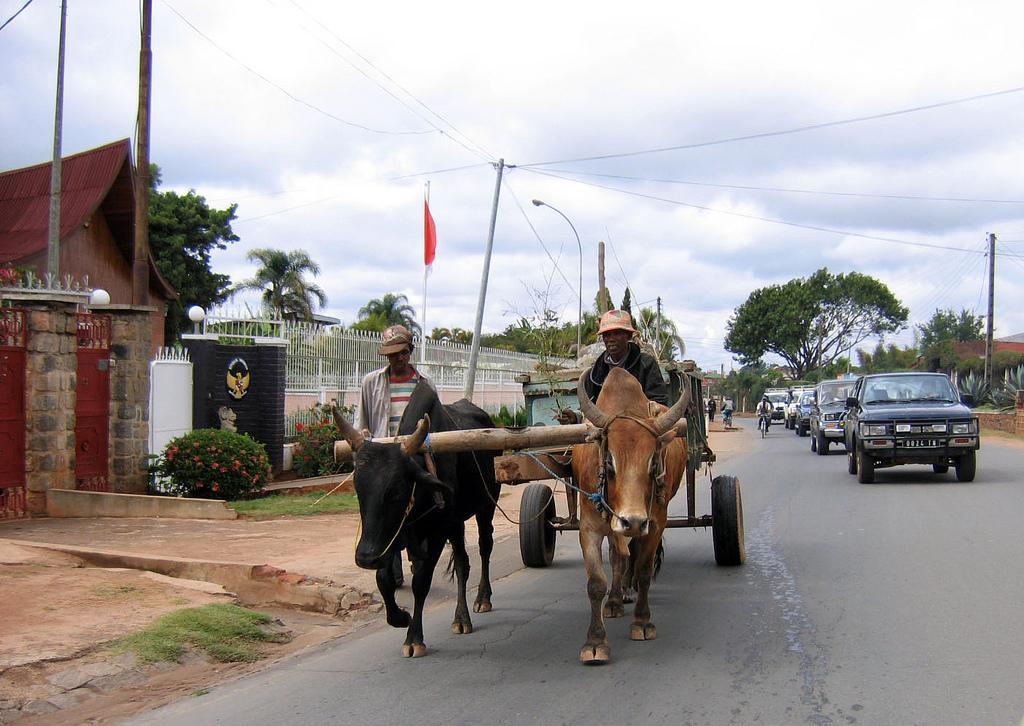 Традиционный транспорт
