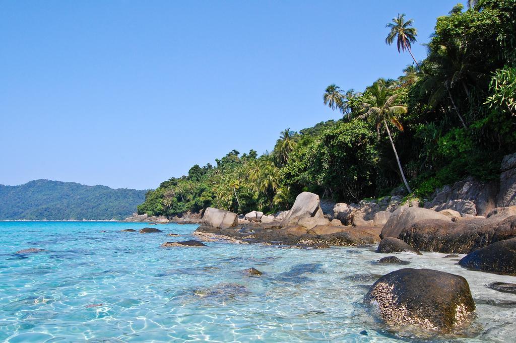 Лазурная вода и пальмы