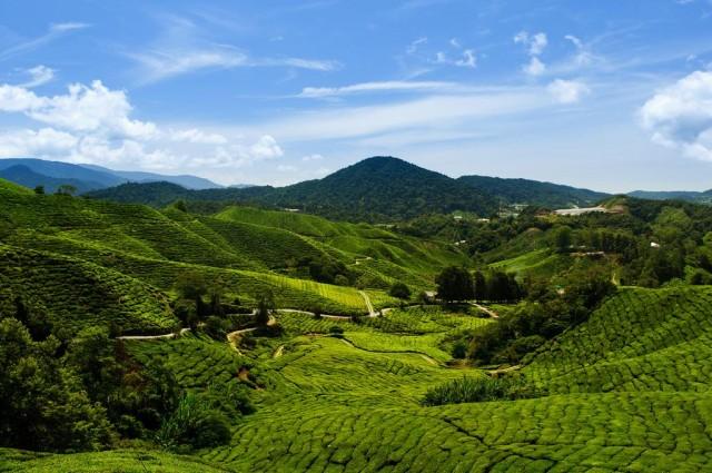 Природа Малайзии