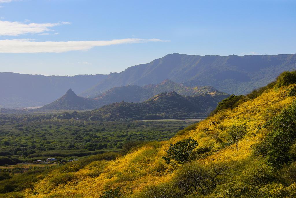 Природа Маврикия