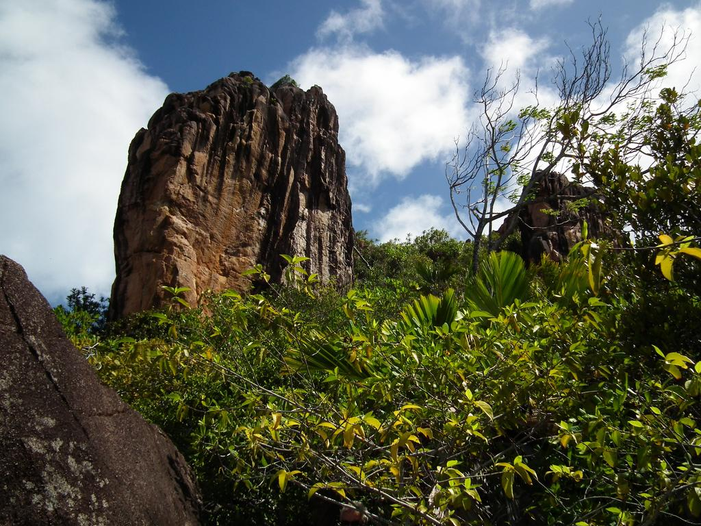 Скалы острова Курьез