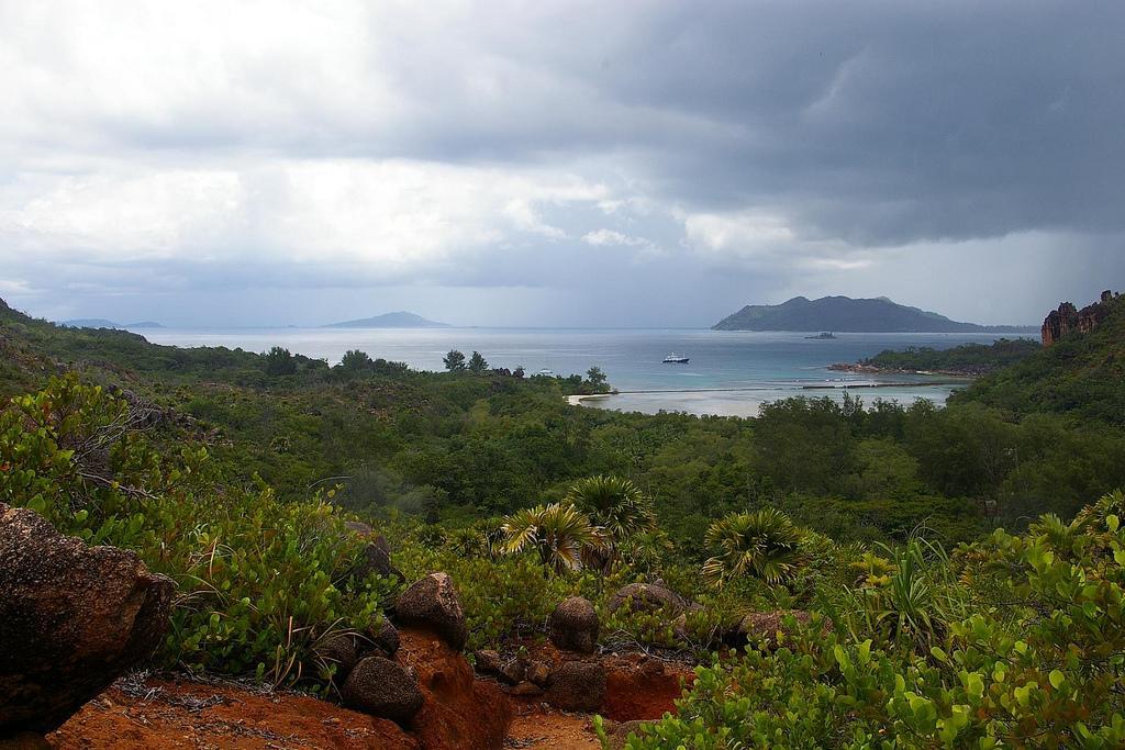 Остров Курьез