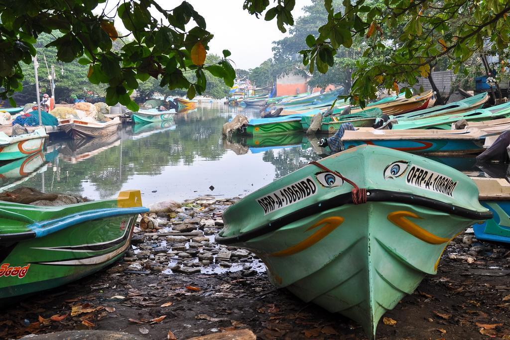 Лодки в Негомбо